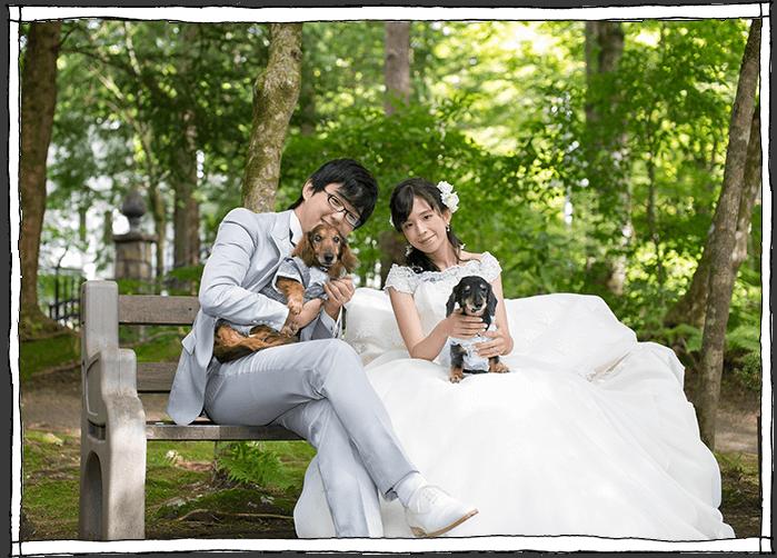 緑の中で犬と家族のウェディングの写真