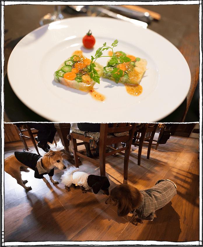 凉の音でのお食事会の写真