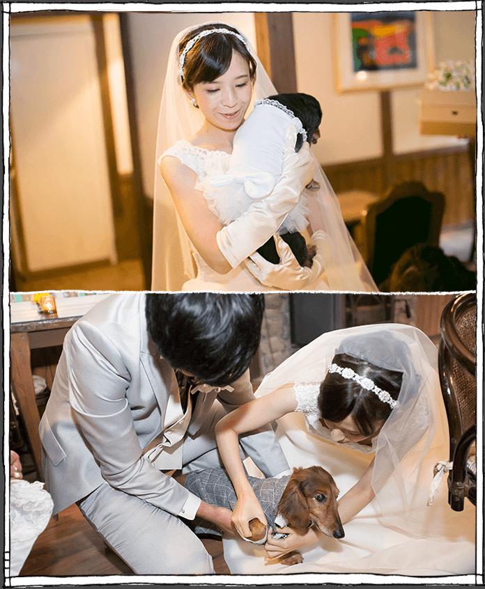 軽井沢で犬との結婚式の写真